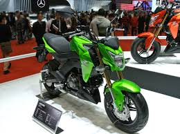 Kawasaki Z125 Pro SE as a Good Motorcycle for a Small Female Beginner?